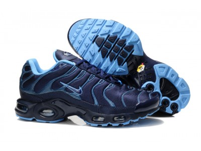 Nike Air Max Plus Tn син.